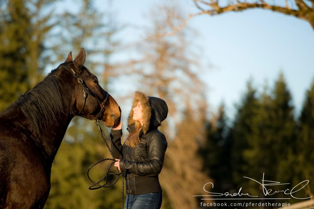 Pferdefotografie Salzburg