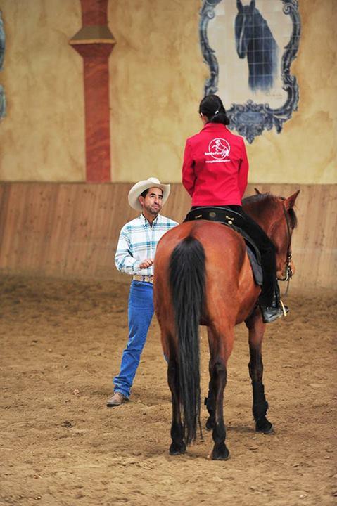 """Jeder sollte möglichst viel Zeit in """"Pferdebeobachtung"""" zu investieren"""