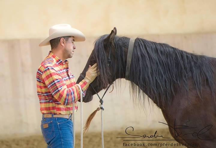 Pferde versuchen also dauernd mit uns zu kommunizieren, aber irgendwie kommt keine passende Antwort