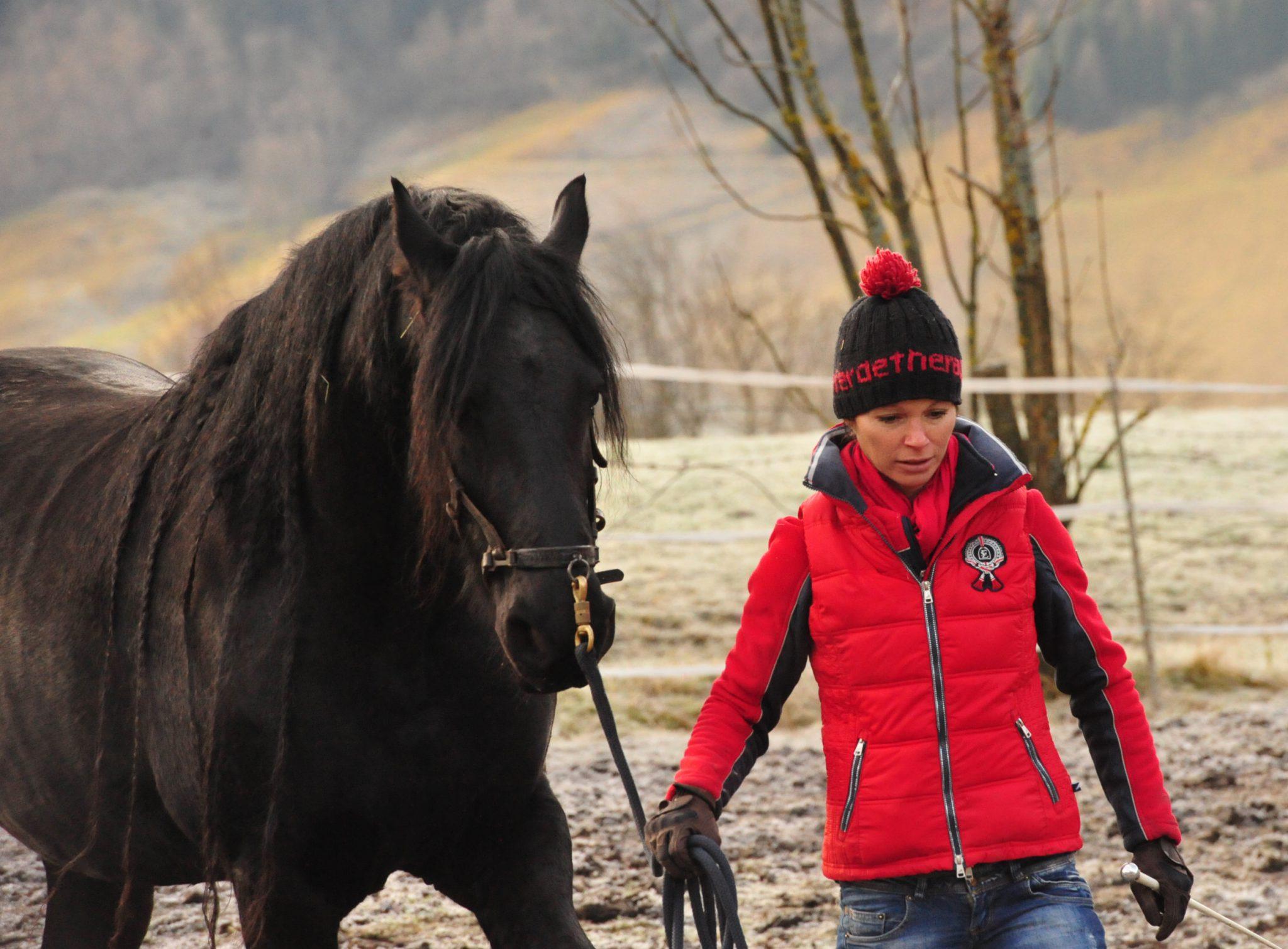 Pferdetraining Sandra Frenzel | Sandra Fencl