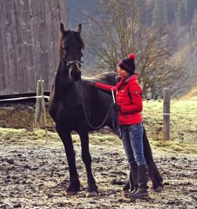 Jungen Pferden muss man als Trainer Sicherheit geben.