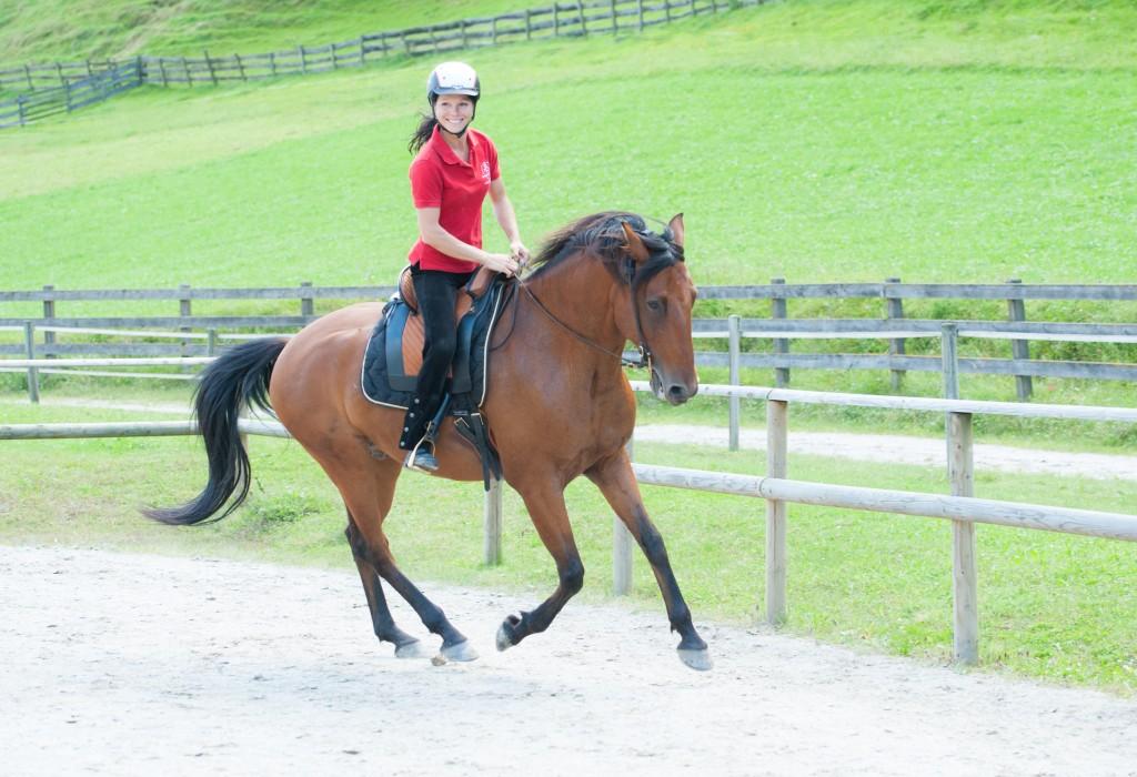 Sandra Fencl pferdetraining salzburg