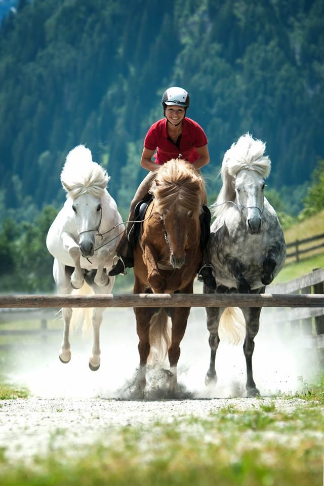 Richtiges Pferdetraining Abendseminar