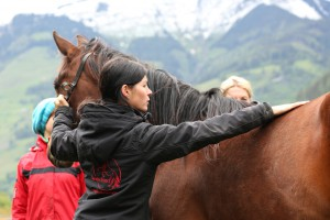 Pferdemassage Hufgesundheit