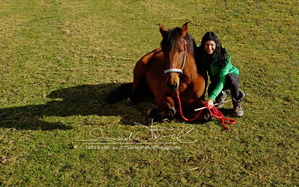 Sandra Fencl Fellwechsel Pferd