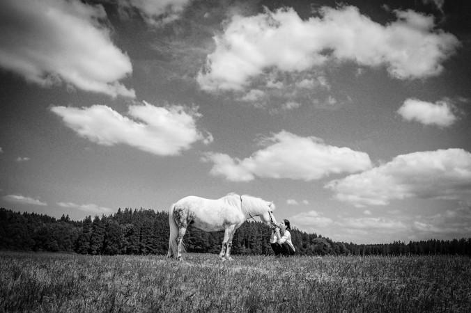 harmonie-mit-pferden-sandra-fencl
