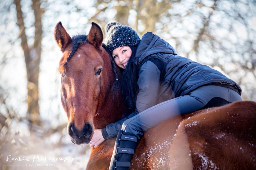 Hinlegen Pferd