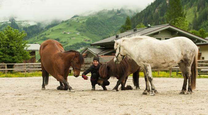 Die ganzheitliche Ausbildung von Pferd und Reiter