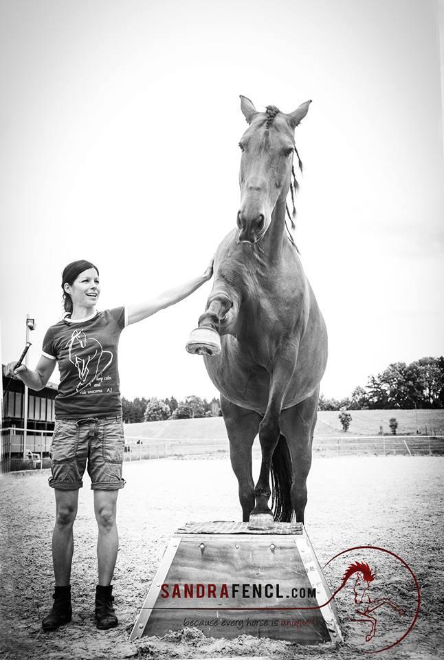 """Nur Pferde, die richtig gefüttert sind und keinen Mangel an Vitalstoffen aufweisen, sind wirklich leistungsfähig bei gleichzeitiger """"Tiefenentspannung""""."""