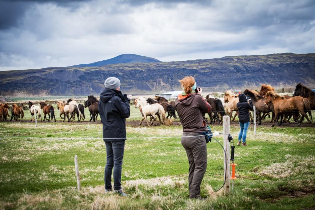Fotografieren auf Island