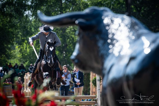 Pferdeeventfotografie