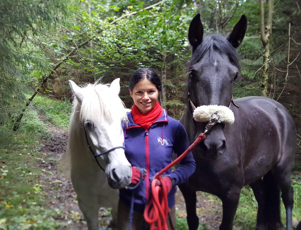 Pferdetraining Muenchen