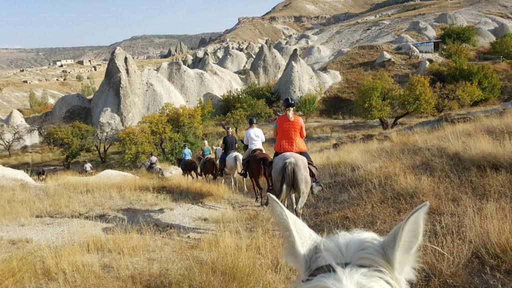 Im Entenmarsch auf schmalen Pfaden mit unseren trittsicheren Pferden.