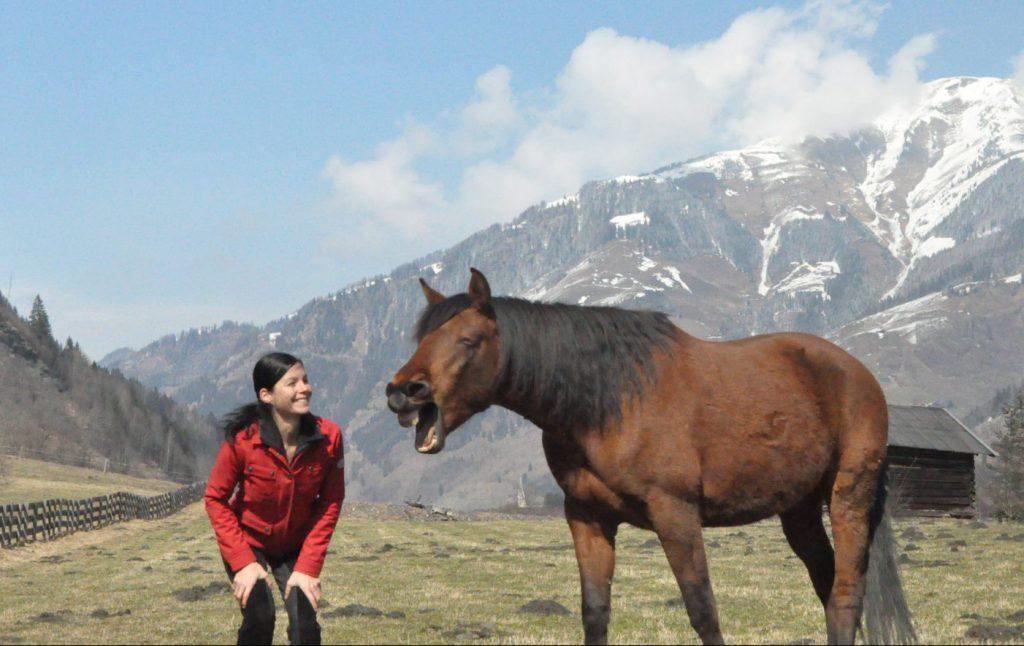 Beim Pferdetraining sollten Pferd und Mensch Spaß haben und es soll aber gleichzeitig gesundheitsfördernd und nicht verschleißend fürs Pferd sein.