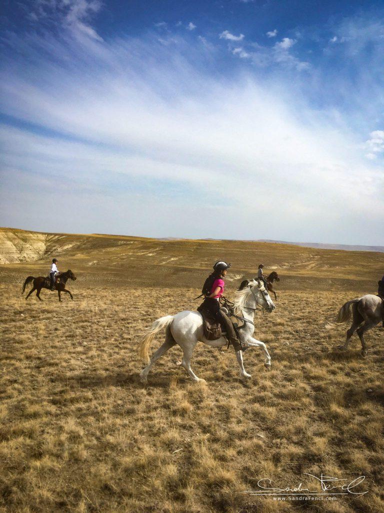 Ausgedehnte, flotte Galopps standen an der Tagesordnung! Mein Pferd war ein Traum! Nur der Fotorucksack war etwas nervig. Foto: Jessica Lehmann