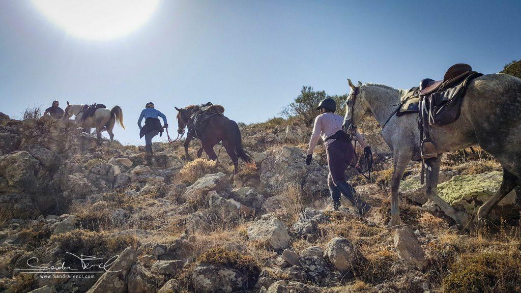 Unwegsames Gelände? Kein Problem für die Pferde der Kapadokya Ranch! Jedoch für so manchen Zweibeiner anstrengender als gedacht.