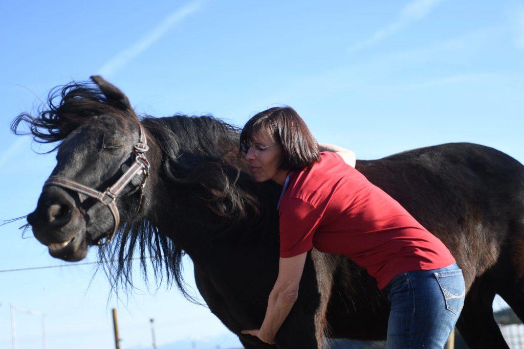 Jin Shin Jyutsukurs Pferd
