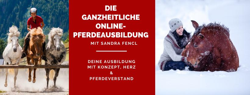 Die ganzheitliche Online-Pferdeausbildung mit Sandra Fencl