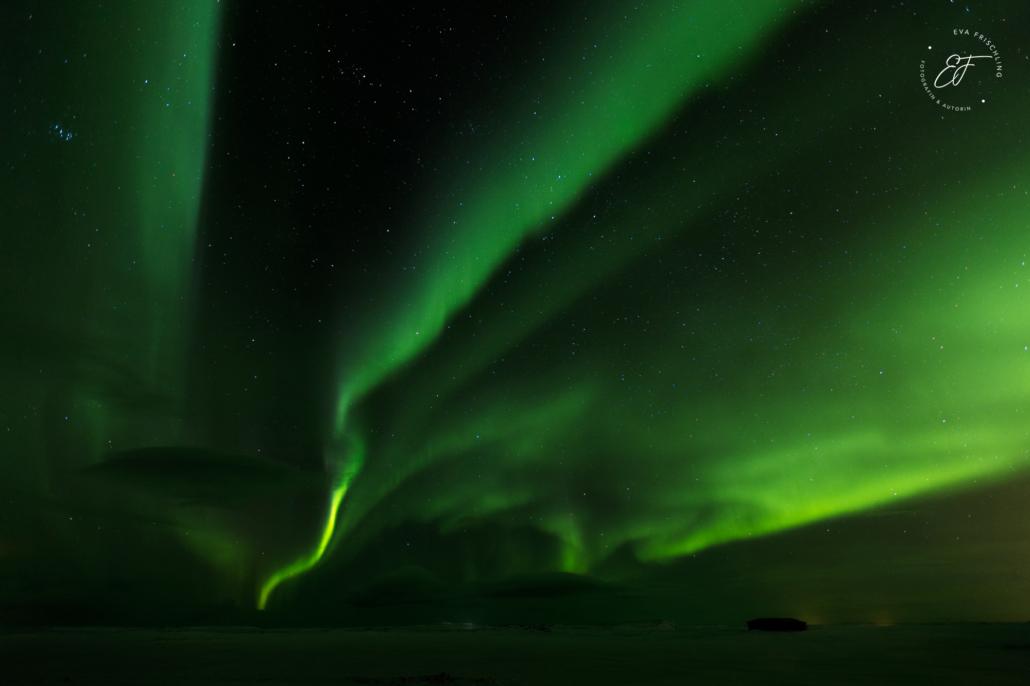 Nordichter auf Island bei der Islandreise mit Sandra Fencl und Eva Frischling