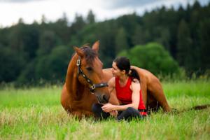 Die Bodenarbeit verhilft zu Vertrauen, Respekt und Sicherheit zwischen Mensch und Pferd.