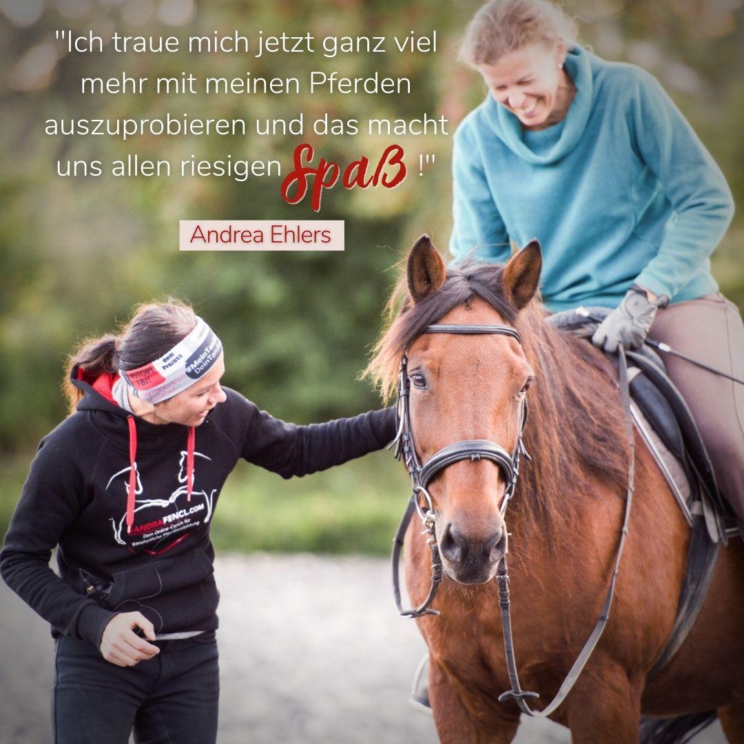 Mehr Spaß im Pferdetraining