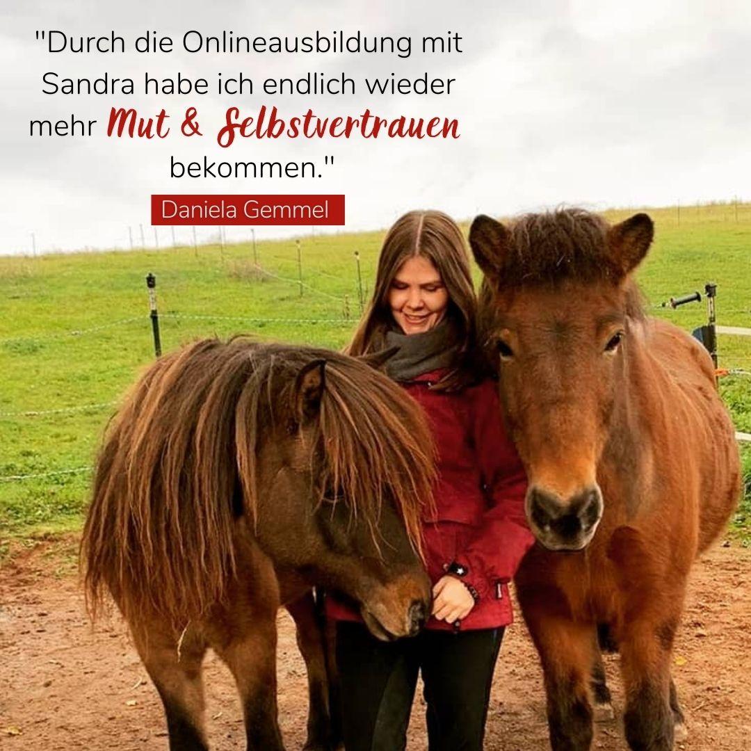 Pferdetraining Sandra Fencl Feedback
