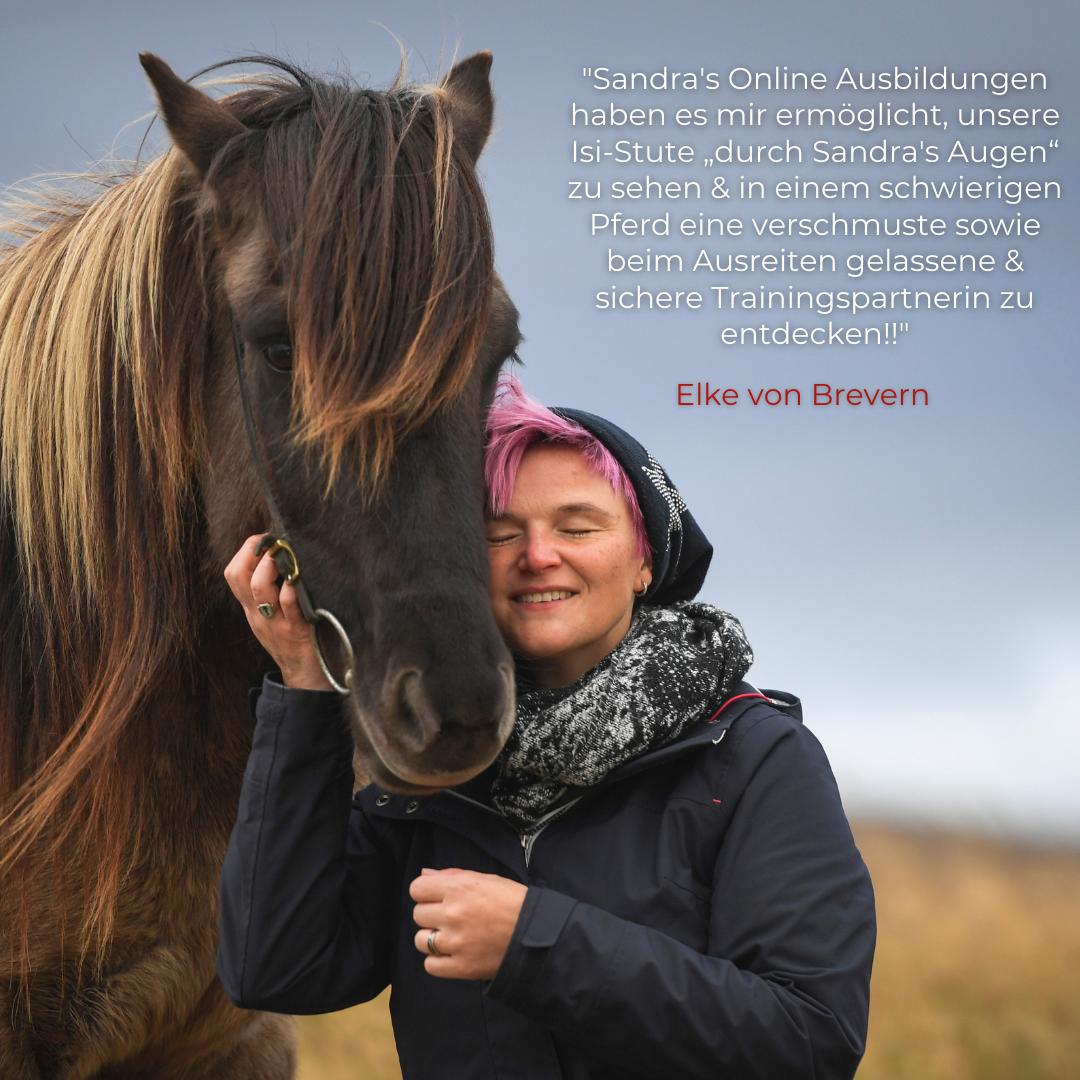 Feedback-Stimmen zu Sandra Fencl Pferdetraining