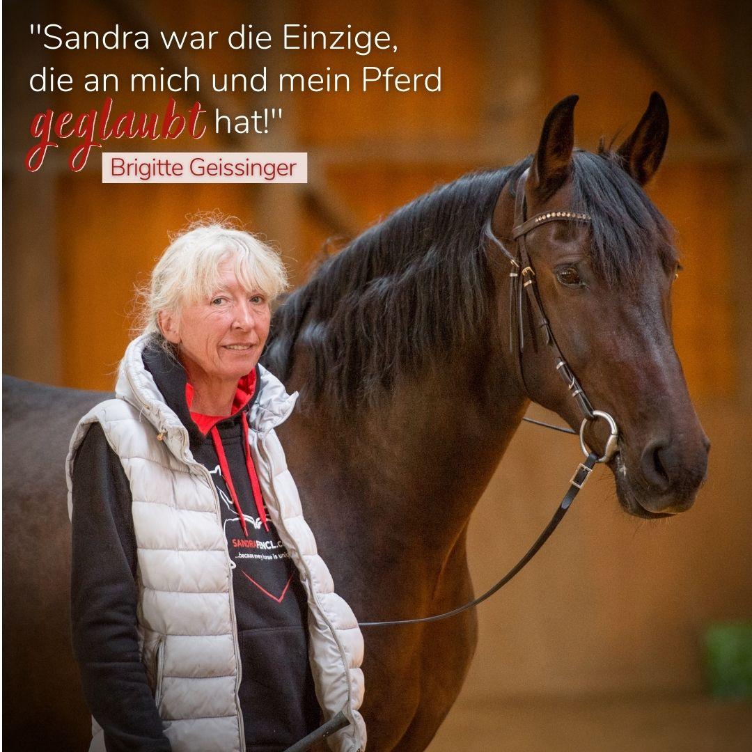 Meinungen zu Sandra Fencl Onlinekurse Pferd