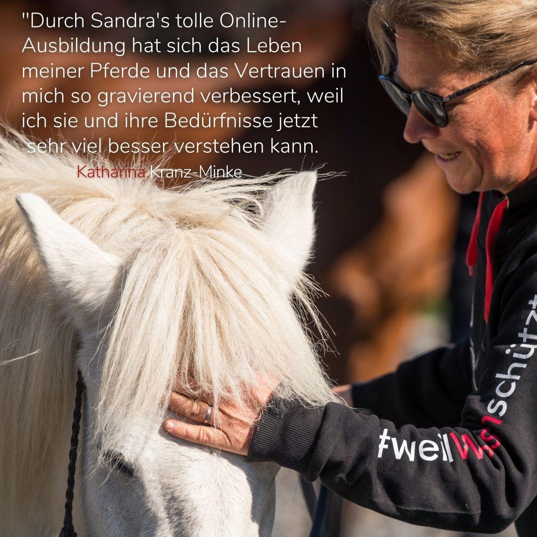 Sandra Fencl Onlineseminar Feedback