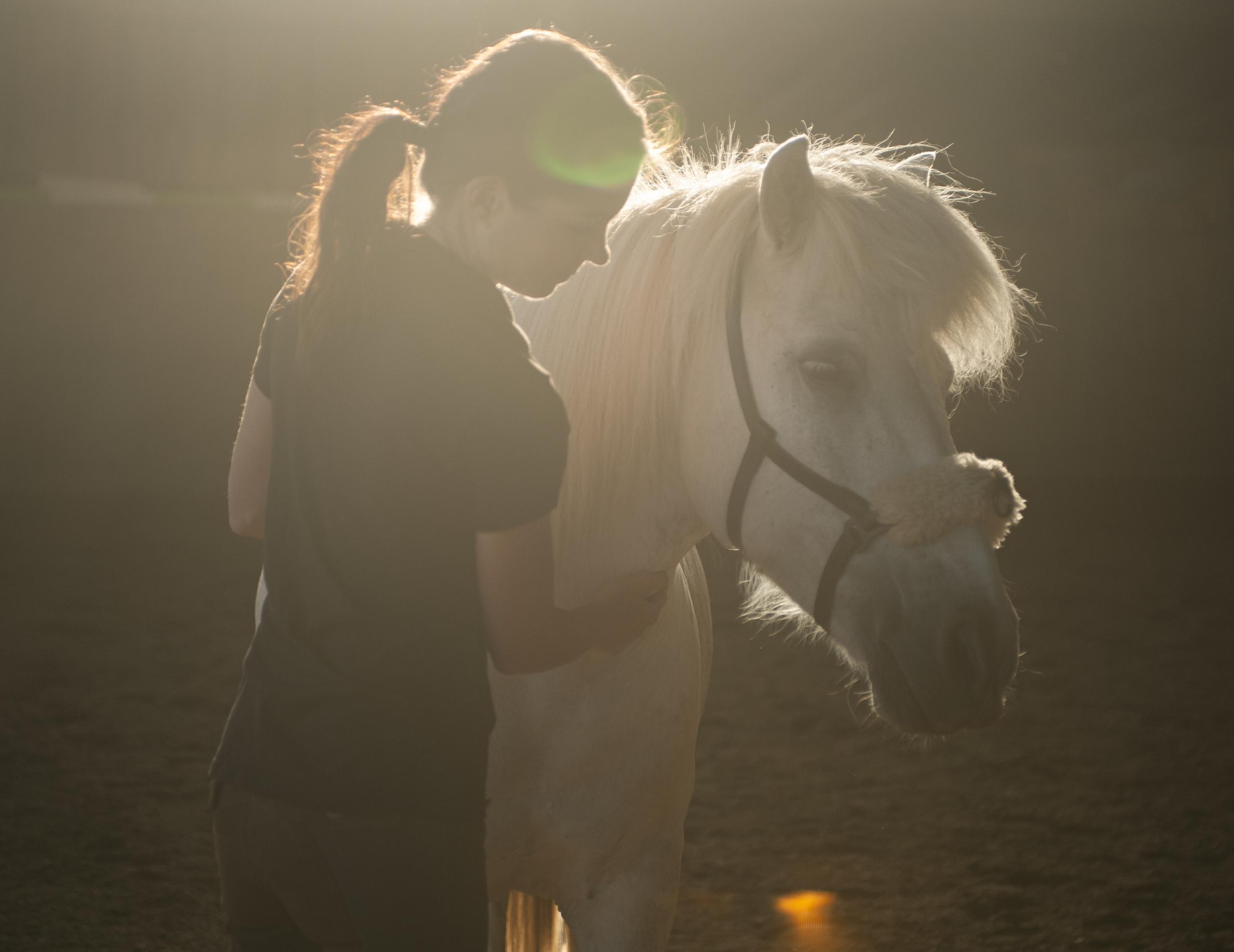 Sandra Fencl ganzheitliches Pferdetraining