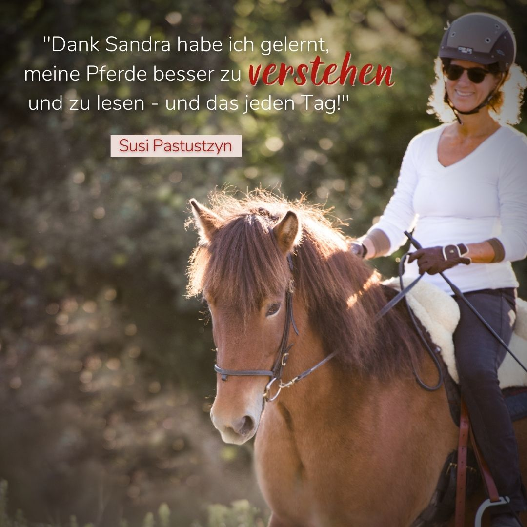 Sandra Fencl Onlineausbilidung Feedback