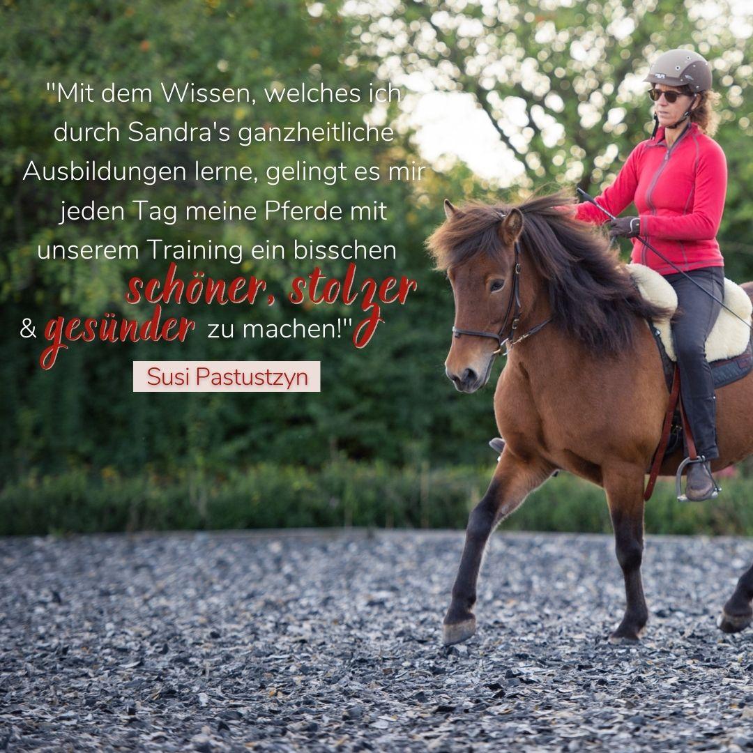 Sandra fenzl Feedback Pferde