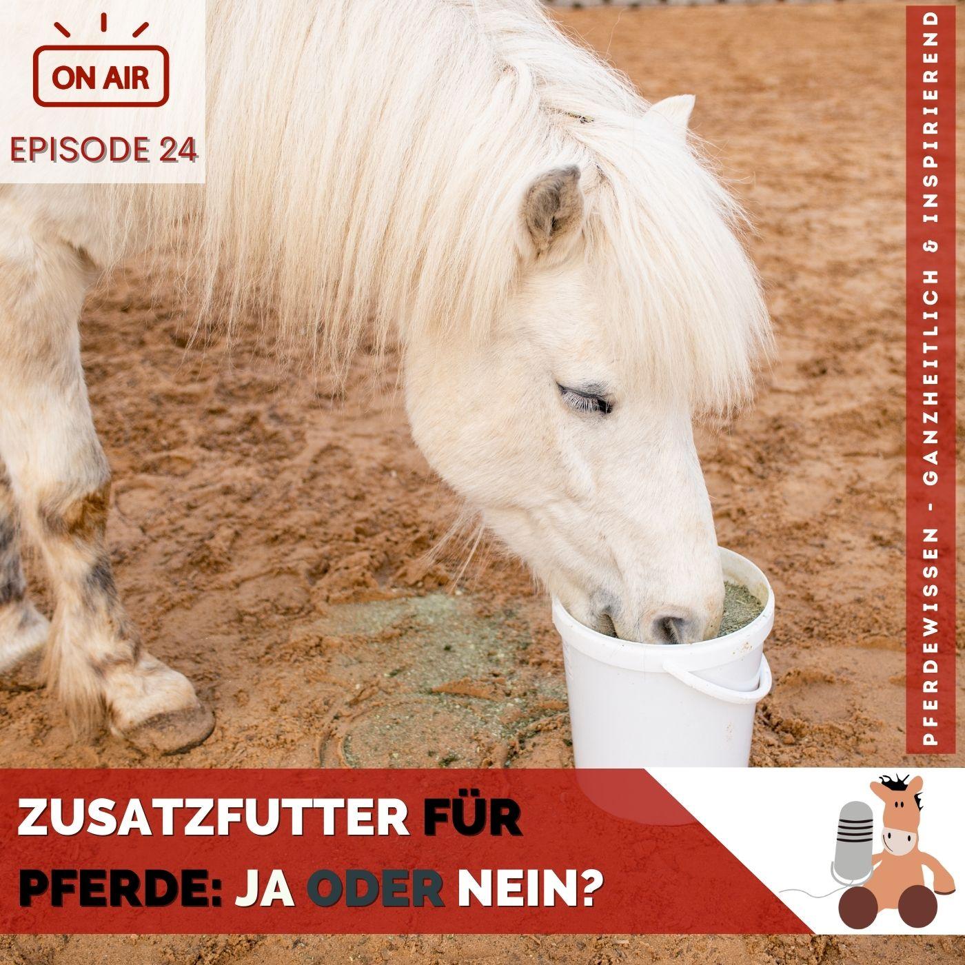 Zusatzfutter und Kräuter für Pferde ja oder nein Sandra Fencl