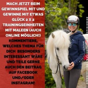 Alexandertechnik für Reiter Sitzübungen
