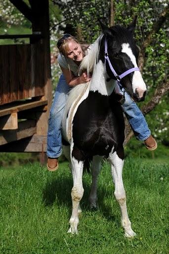 Fallbeispiel Pferdetherapie